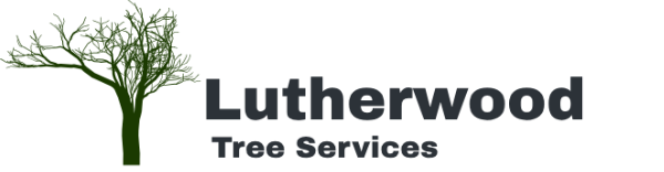 Lutherwood Tree Service